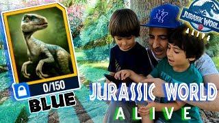 JURASSIC WORLD ALIVE 🦖HAN SOLTADO A BLUE!! 🦕  juegos android y aplicaciones para niños
