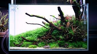 Warsztaty z Takayuki Fukada w Green Aqua.