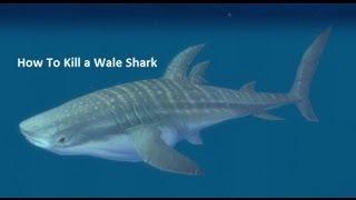 How To Kill Whale Shark in Vashj'ir WoW