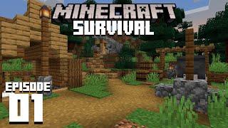 Minecraft 1.16 Survival Let