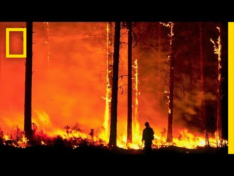 Firefighters Battle the Infernos of Climate Change | Short Film Showcase thumbnail