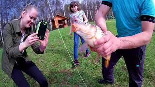 Золотые караси платная рыбалка огуднево форум