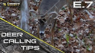 "Deer Calling Tips - E.7 ""Doe Estrus Bleats on Breeding Bucks"""