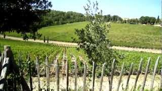preview picture of video 'Wine Tour in Tuscany: Vineyards and winery at Caiarossa in Maremma'