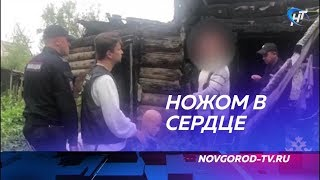 Оперативно раскрыто убийство мужчины в районе улицы Хутынская, которое произошло 17 августа
