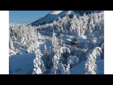 Онлайн-трансляция: Пресс-конференция участников экспедиции «Полюс холода»