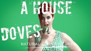 A HOUSE (Doves) TQID