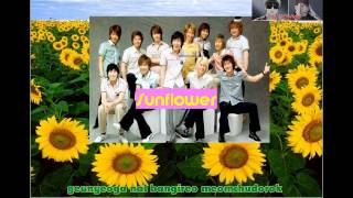 Super-Junior-해바라기-(Sunflower) (instrumental with lyrics)