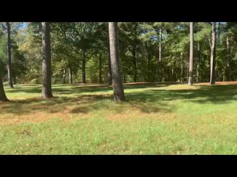 Video Of Elmers Hill, MS