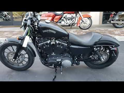 2014 Harley-Davidson Sportster® Iron 883™ in Temecula, California - Video 1