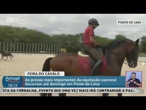 Reportagem do 'Portugal em Direto' sobre a XI Feira do Cavalo de Ponte de Lima - Parte II
