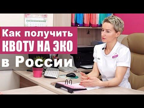Как получить квоту на ЭКО по ОМС в России. Интервью с врачом-репродуктологом