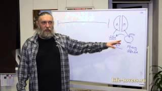 """""""Мужчина и женщина"""" - открытая лекция Алексея Капранова в лектории Бандероль"""