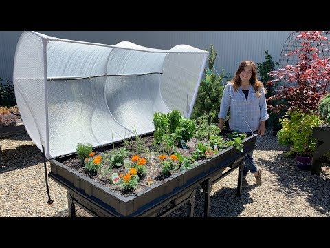 Large Vegepod Raised Garden Bed! This thing is huge! 🌿 // Garden Answer
