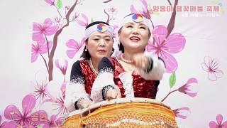 양동이 봄꽃마을 축제 스케치영상