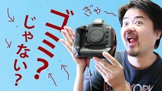 【恐怖の】Canon EOS-1D X Mark II センサーにグリス飛散か?ゴミ付着か?無数の黒点が写真にびっしり写り込む【清掃?】