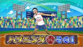 プロ野球珍プレー好プレー大賞2017ハプニング珍