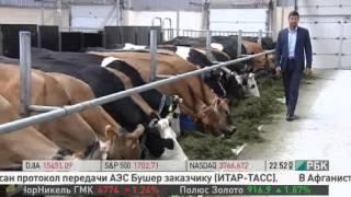 Органические продукты. Программа «Сделано в России» (телеканал РБК)
