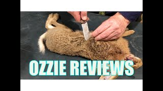 How to Skin & Butcher a Rabbit / Hare for the Table