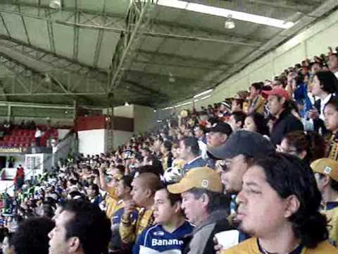 """""""REBEL (J4 Toluca VS Pumas)"""" Barra: La Rebel • Club: Pumas"""
