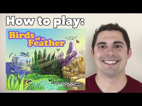 JonGetsGames - Birds of a Feather: How to Play!