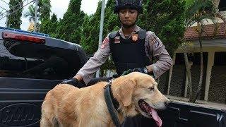 Polres Karanganyar Latih Gonzo Mampu Deteksi BOM dan Melaksanakan Pengamanan