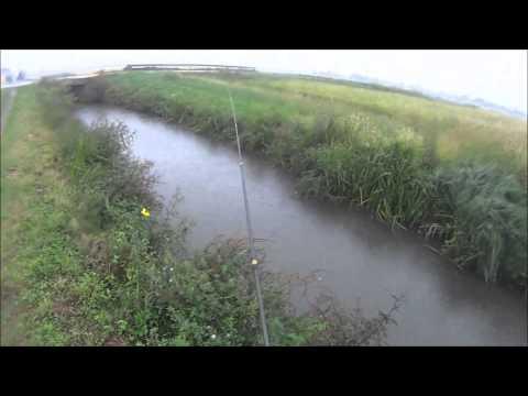 Romashkovo pesca pagato