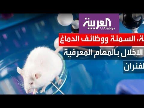العرب اليوم - شاهد: دراسة جديدة تكشف مخاطر السمنة الخفية على الإنسان
