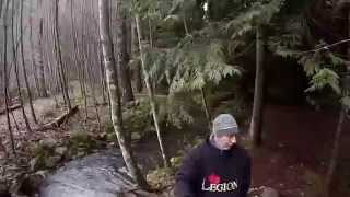 Upper Chilliwack River Trail