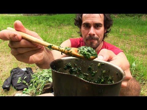 Die Mischung der Gräser bei der Schuppenflechte