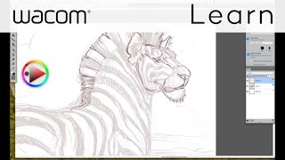 wacom intuos tutorial step 1 concept rough drawing in corel