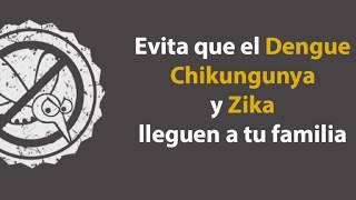 Prevención del #Zika, #Chikungunya y #Dengue
