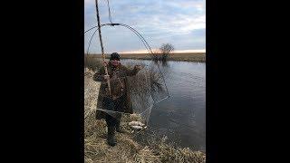 Рыбалка на подъёмник, паук на реке Рыба кишит и плавает под ногами.