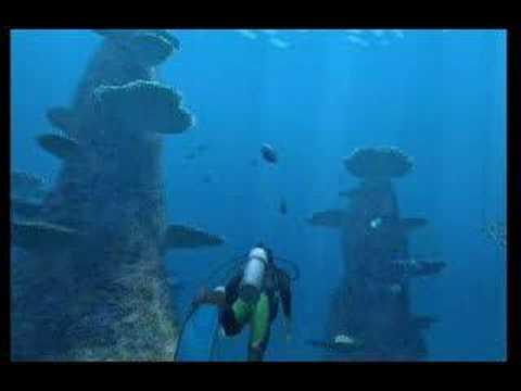 Видео № 0 из игры Endless Ocean [WII]