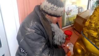 Сумасшедшая бабка режет морковку)