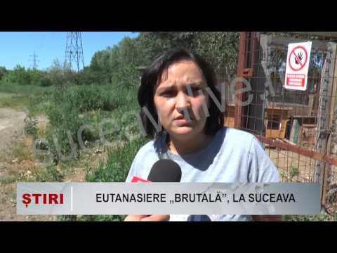 EUTANASIERE BRUTALA LA SUCEAVA 2015