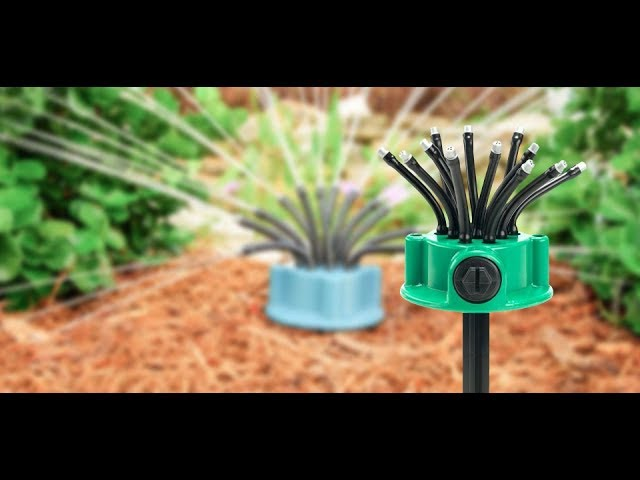 Видео Fresh Garden