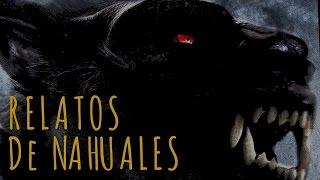 Historia de Nahuales