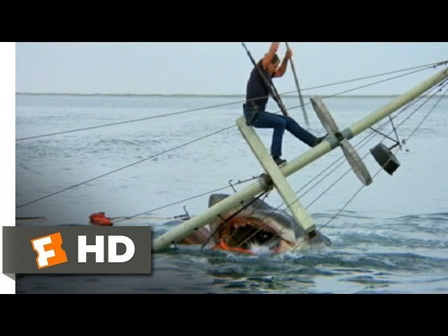 Jaws (1975) - Brody Kills the Beast Scene (10/10) | Movieclips