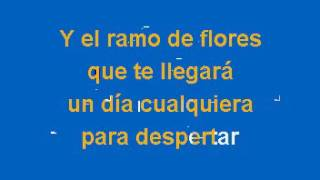 Jose Luis Rodriguez El Puma   Voy A Conquistarte Karaoke