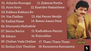 Udit Narayan Tamil Hits   All Time Favourite   Udit Narayan Tamil Songs Collection   Audio Jukebox
