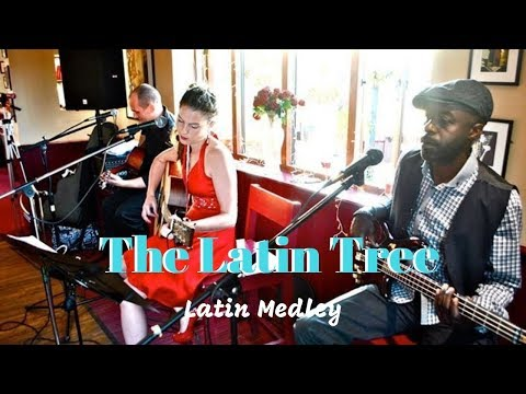 The Latin Tree Video
