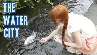 The Water City | Gujo Hachiman 名水の町・郡上八幡