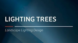 Lighting Trees  | Landscape Lighting Design By FX Luminaire