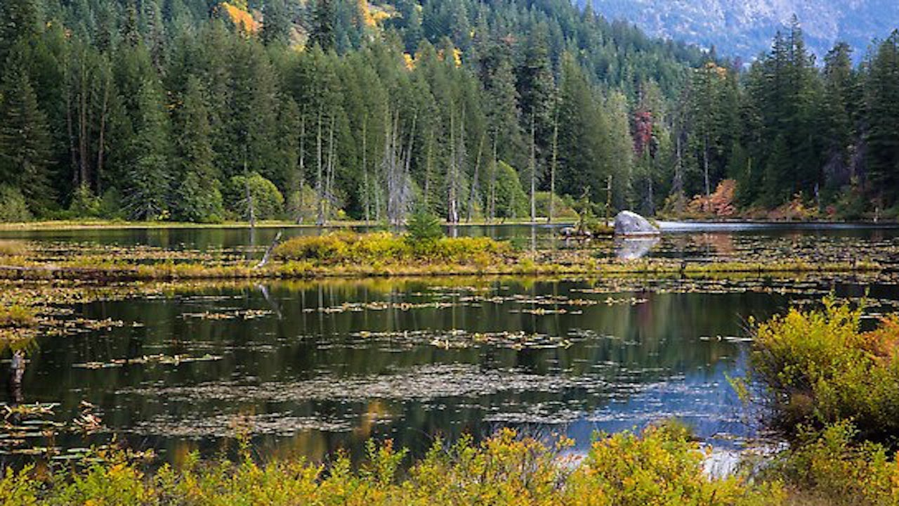 "National Park Service Refusing To Rename ""Coon Lake"" thumbnail"