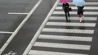 Пешеход всегда прав 18+