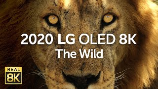 YouTube Video FrKNa3hruBw for Product LG SIGNATURE ZX OLED 8K TV by Company LG Electronics in Industry Televisions