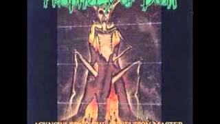 Prophecy of Doom , Axegrinder Split