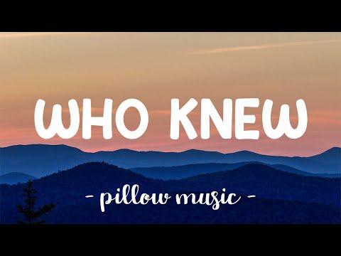 Who Knew - Pink (Lyrics) 🎵