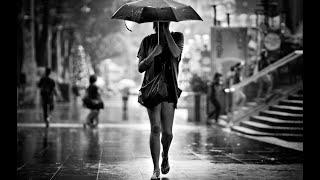 Shelter on a Rainy Day